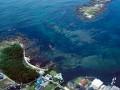 天神島臨海自然教育園画像001