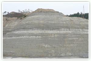 福島県いわき市の地層 (古第三系白水層群石城層)